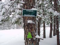 Snowshoe to Hogback