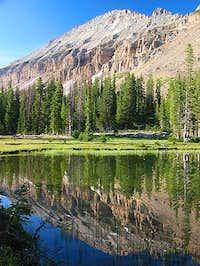 Mt.Agassiz Reflection