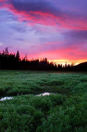 Christmas Meadows Sunset