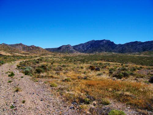 4WD Trail and Graham Peak