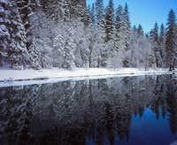 Snowy Merced River Tree Reflection