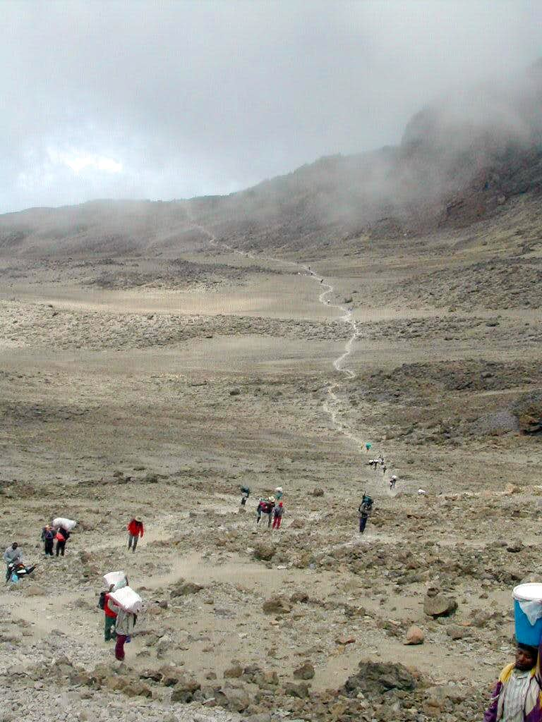 Kilimanjaro, Machame route. The full story.
