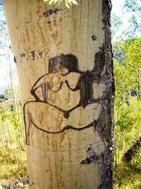 basque shepard tree porn