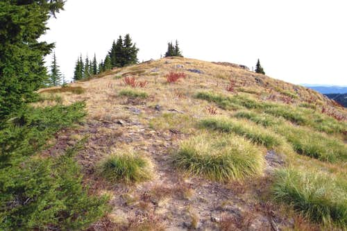 The Gentle Summit of Larkins Peak