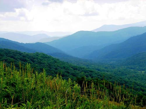 Roan Highlands from Yellow Mountain Gap