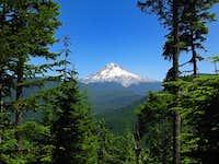 Mt. Hood from Devils Peak