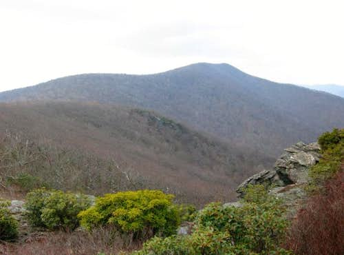Bluff Mountain.