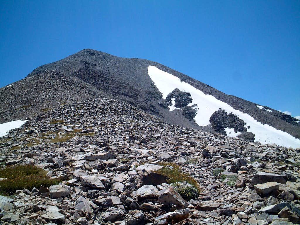 wheeler peak2