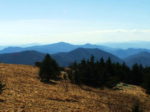 From Grassy Ridge Bald