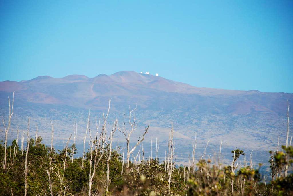 Mauna Kea fr the SE
