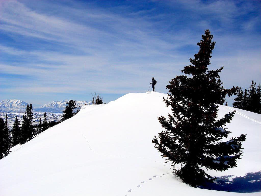 Duke summit view