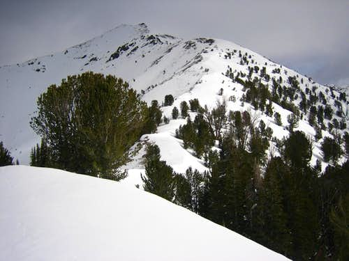 Galena- SW Ridge