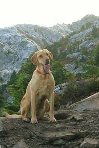 Smiling Brie on Mt. Pilchuck