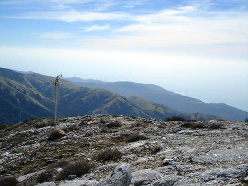 Pico Blanco Summit