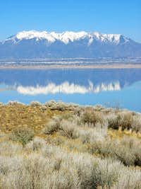 Mt. Ogden from Antelope Island
