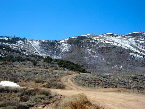 Take this trail to the summit ridge
