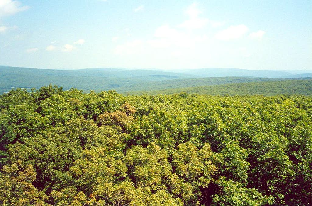 View of the Missouri Mountains