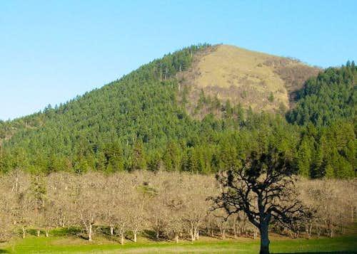 Mule Mountain Trail