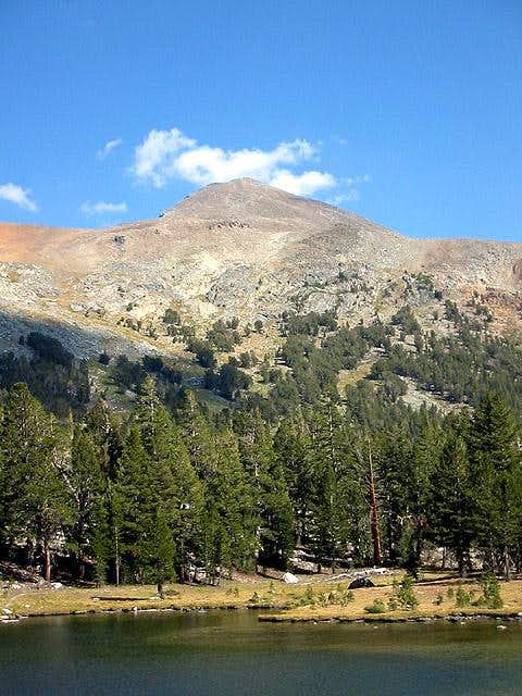 Mt Dana from Dana Meadows at...