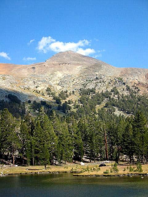 Mt Dana from Dana Meadows at...