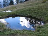 Reflection in the puddle I
