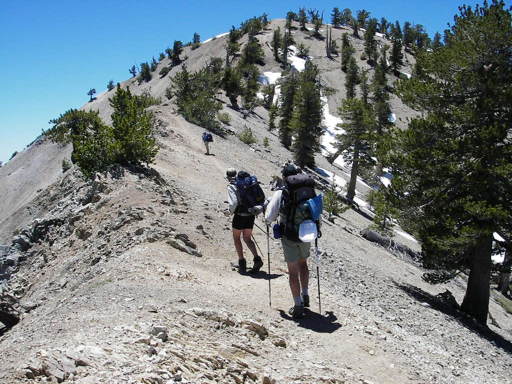 PCT Hikers Going up Baden-Powell