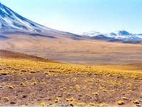 High Desert plains in Chile
