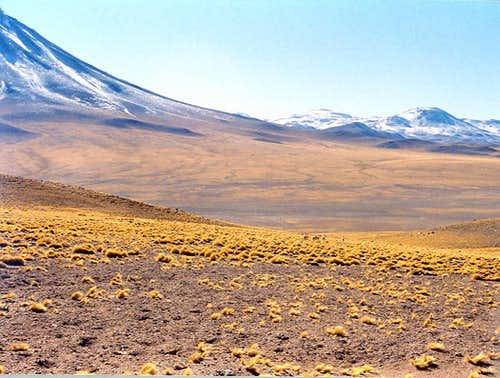 High Desert plains in Chile