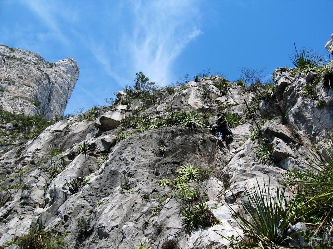 Agile Trekker: CT Appalachian Trail - Section 4 - Calebs