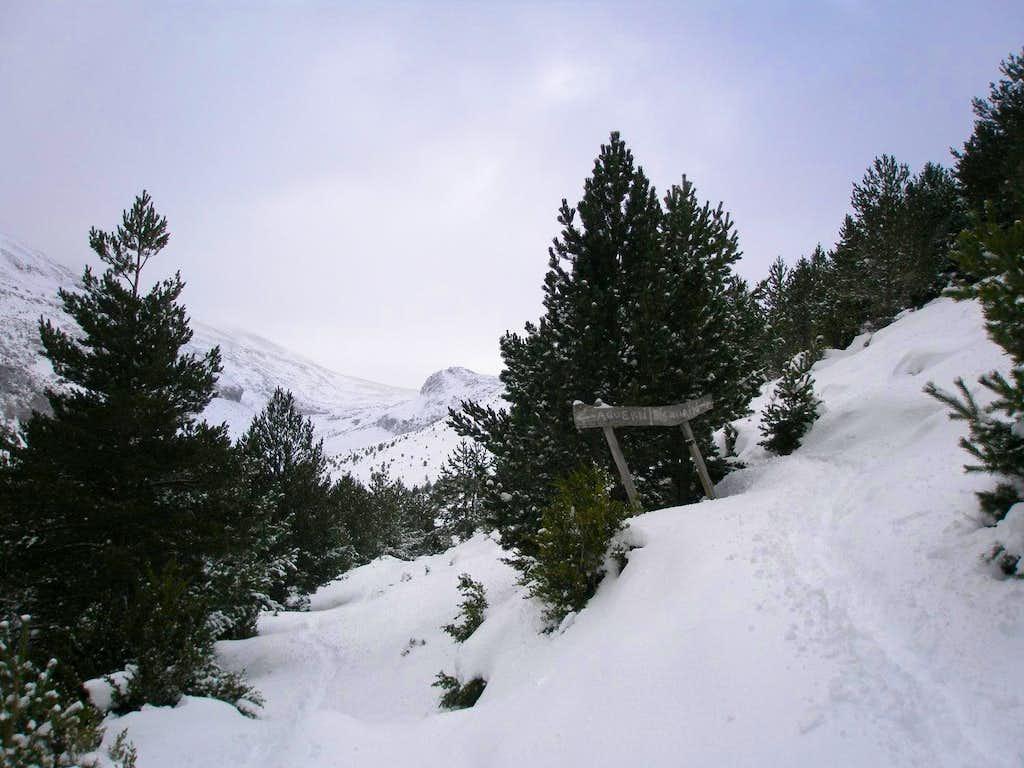 Turn left for Agüerri