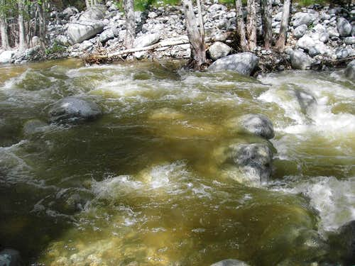Bear Creek Running Full