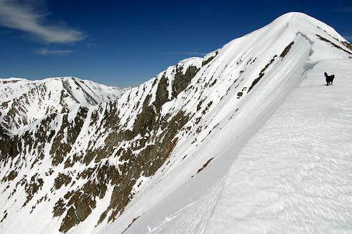 Mt Guyot.  East Ridge