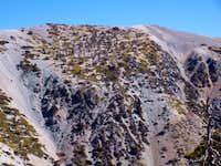 Mt. Harwood