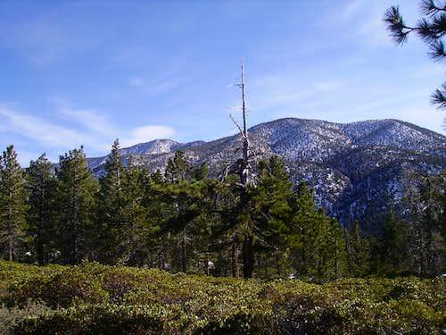 San Bernardino Peak