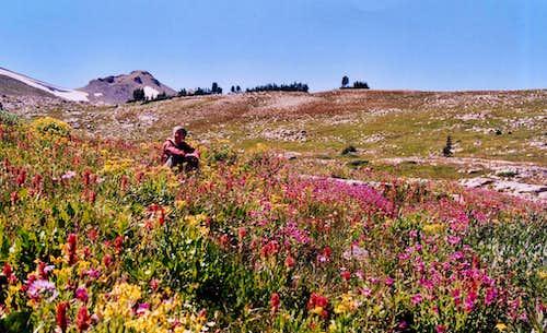 Gros Ventre Trail