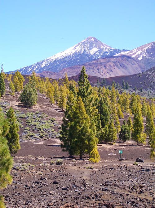 Teide from  near Samana