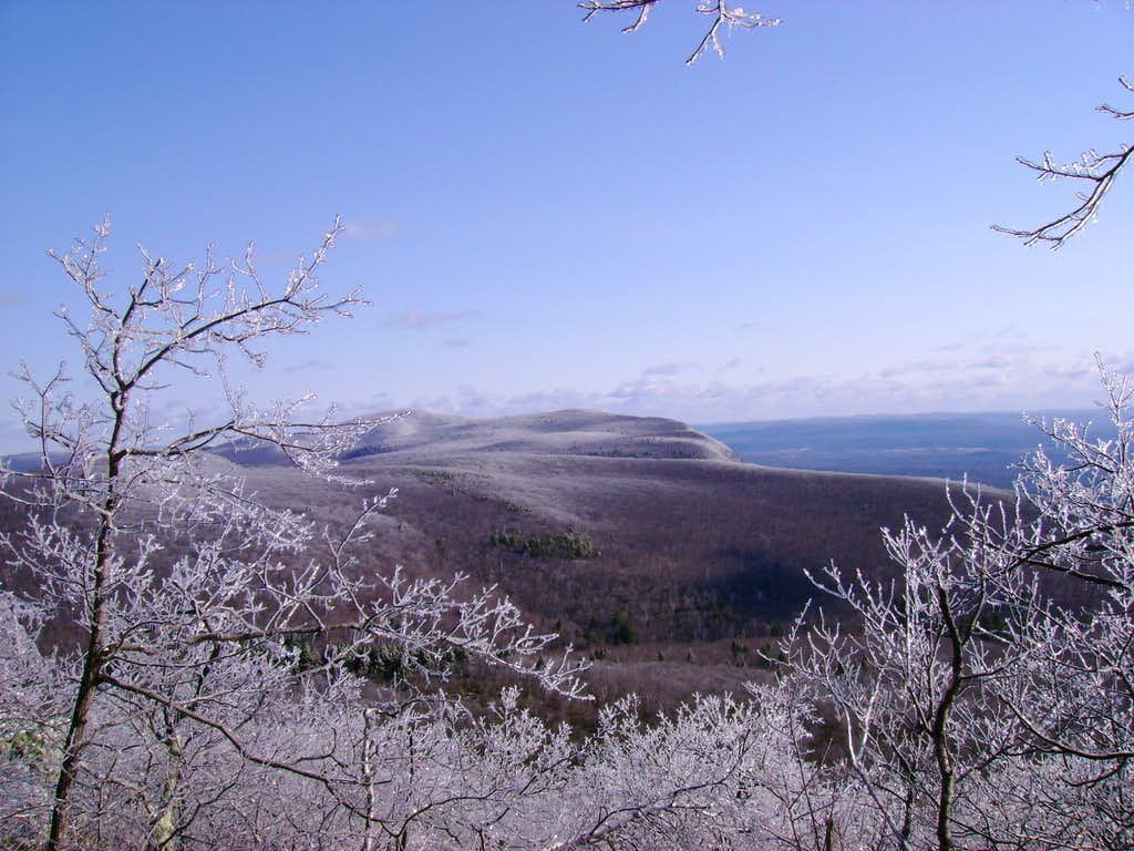 View North from Bear Mt