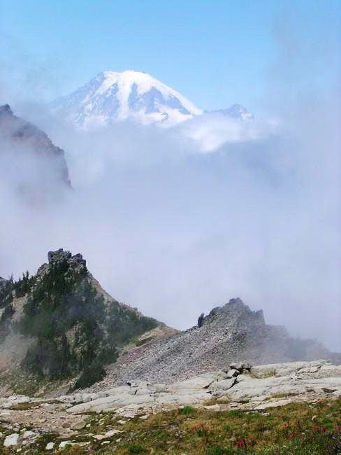 Mount Ranier from Old Snowy...
