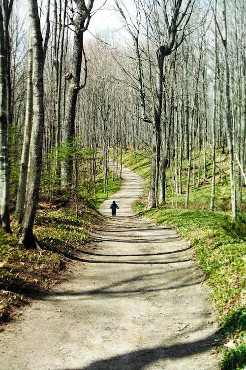 Miners Falls Trail
