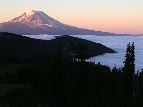 Morning view of Mt Adams from...