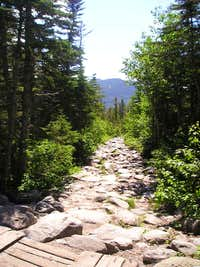 Tuckerman Ravine Trail