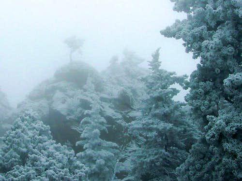 Foggy, Frosty Ridge