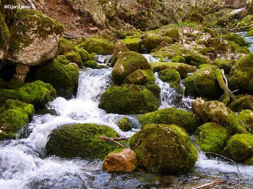 Spring inside Komarnica canyon.