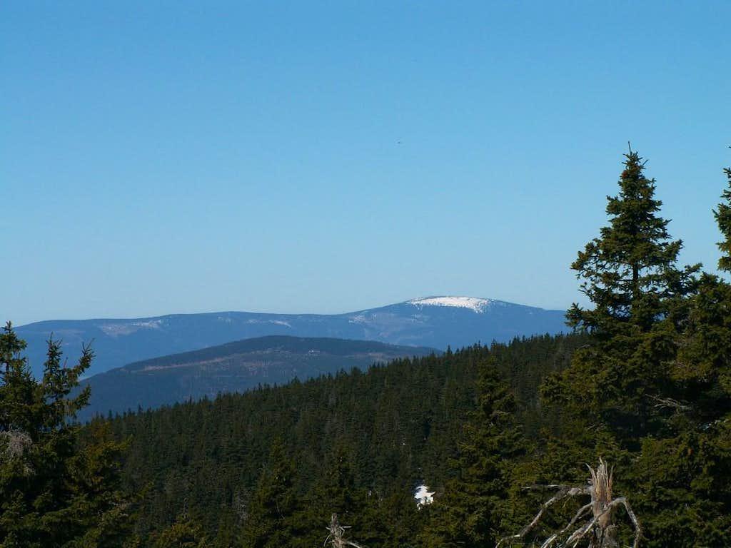 Králický Sněžník (1424 m)