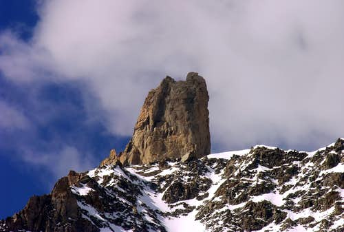 Il Dente del Gigante (4013 m)