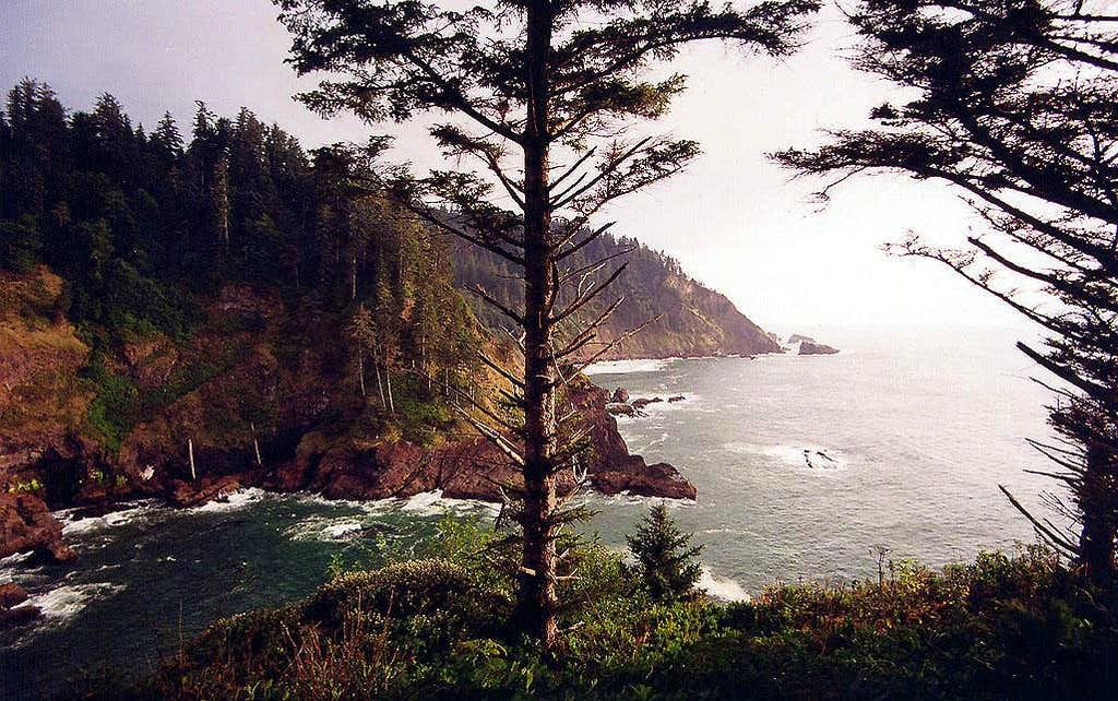 Mouth of Hart Cove