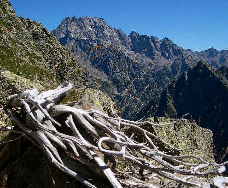 Serra dell'Argentera