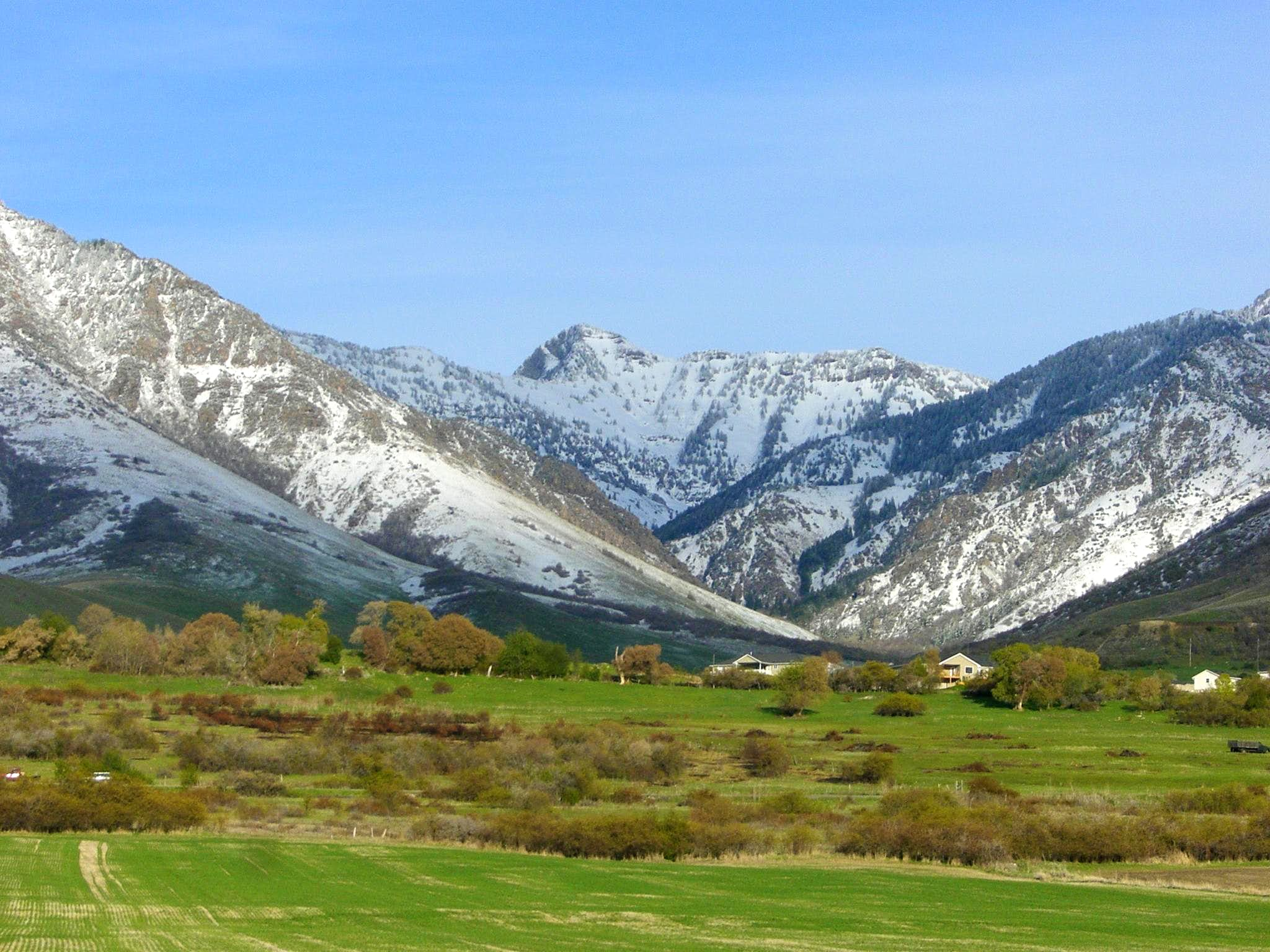 The Best of Cache Valley