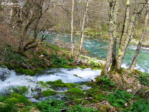 Komarnica river