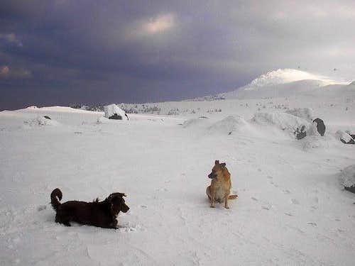 Nournours and Sila atop Kamen Del